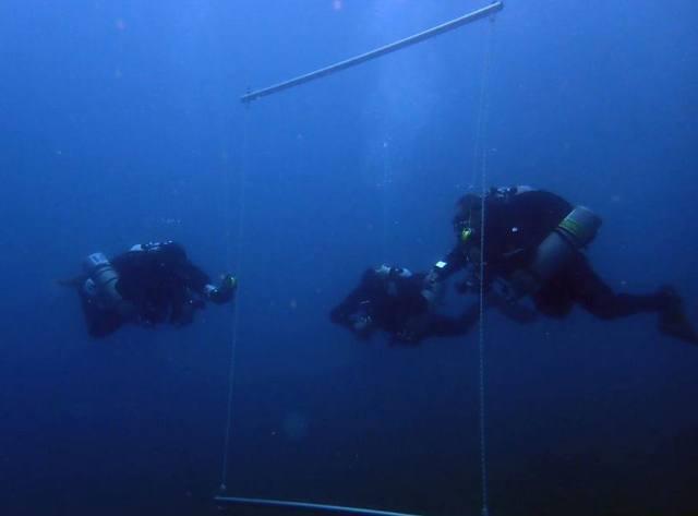 Intermediate Trimix Sidemount Diver L4